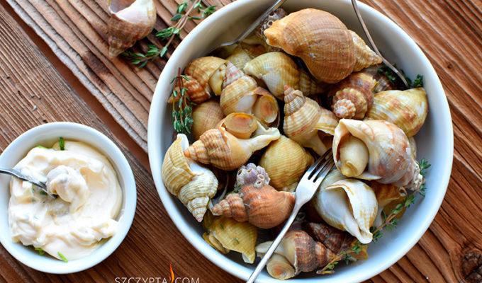 Buloty czyli morskie ślimaki